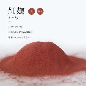 紅麹丸粒 11(ジュウイチ)GABA(100g)|otamaya2002|08