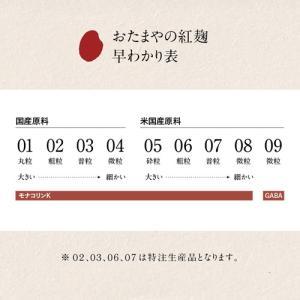 紅麹粉末 09(ゼロキュウ)GABA(1kg)|otamaya2002|19