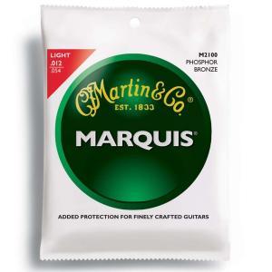 MARTIN M2100/Light (.012〜.054) マーティン アコースティックギター弦 otanigakki