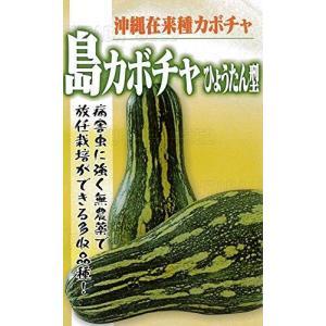 フタバ種苗 沖縄 島かぼちゃ(ひょうたん型) 種・小袋詰(5ml)|otc-store