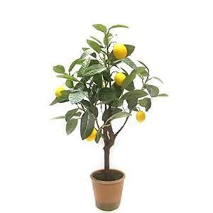 SUNAVI人工観葉植物 レモンツリー 光触媒 フェイクグリーン 観葉植物 空気清浄 消臭 脱臭 室内 屋外 造花 多肉植物 造花 植物装飾|otc-store