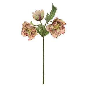 東京堂 造花 モーブグリーン 花径 約4.5~7×全長 約27cm フリルクリスマスローズ FM008151-025|otc-store