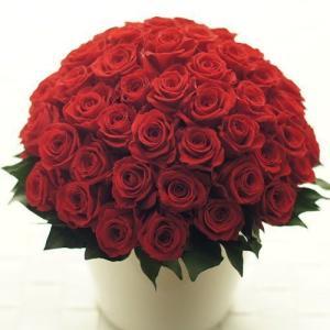 プリザーブドフラワー 60本のバラのアレンジ レッド 母の日 敬老の日 還暦祝い 記念日 お祝い|otc-store