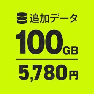 WiFi追加通信データ容量100GB