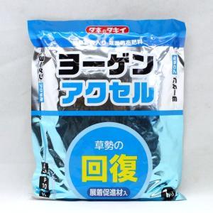 微量要素入り葉面散布剤 ヨーゲンアクセル 展着促進剤入 1kg otentosun