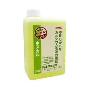 葉面散布・土壌灌注 亜リン酸液肥 サカタ ホスカル 1.2kg|otentosun