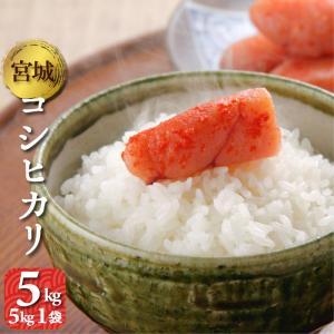 新米 コシヒカリ 5kg(5kg1袋) 宮城県産 令和2年 送料無料(一部除く) 精米 白米