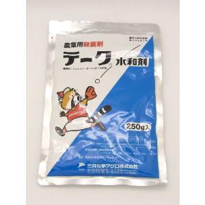 テーク水和剤 250g