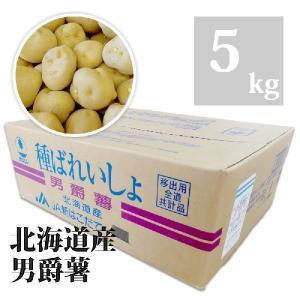 種芋 男爵薯 5kg Lサイズ|otentosun