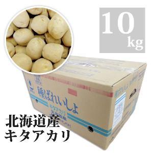 種芋 キタアカリ 10kg Lサイズ|otentosun