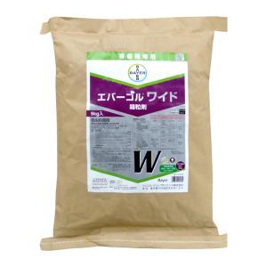 エバーゴルワイド箱粒剤 9kg (育苗箱専用 殺虫雑菌剤) otentosun