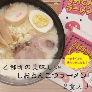 しおとんこつラーメン 生麺 人気店 監修 とんこつラーメン ラーメン 乙部町の美味しいしおとんこつラーメン|otobesousei