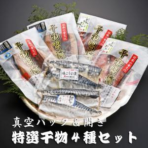 茨城県神栖市【津久文】味に自信ありの受賞商品真空パック&開きの特選干物4種セット|otodoke-shopping