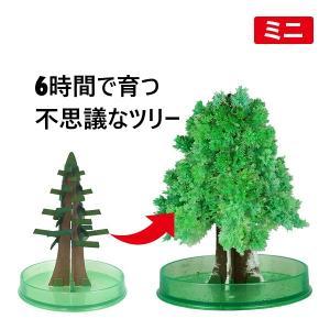 【正規品】大人気マジッククリスマスツリー ミニ♪ 10時間でもこもこ育つ!不思議なクリスマスツリー!...