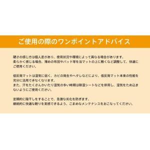 低反発  マットレス シングル 2cm ヘブンズマット ウレタン 敷きパッド ベッドパッド ベッド|otogino|11