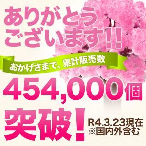 マジック桜 Magic桜 お祝い プレゼント エア花見  インドア花見 記念|otogino|02