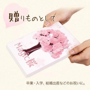 マジック桜 Magic桜 お祝い プレゼント エア花見  インドア花見 記念|otogino|06