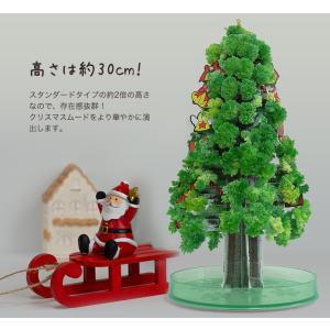 クリスマスツリー マジッククリスマスツリー ラージ マジックツリー|otogino|02