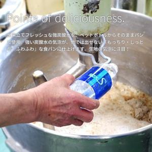 糖質オフ パン 糖質制限(強炭酸水仕込み)九州産小麦ふすま使用 天然素材 低糖質 食パン(1斤/ 530g)砂糖不使用 ダイエット食品|otogino|04