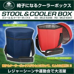 椅子にもなるクーラーバッグ 500mlのペットボトルが14本も入る大容量|otoko-style