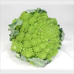 イタリアのフレッシュ野菜 カーヴォロ・フィオーリ・ヴェルディ(緑カリフラワー)  大地と太陽の恵みを...