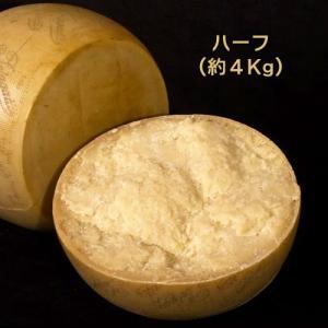 ハード セミハード チーズ ペラガッティーノ ハーフカット 約4Kg イタリア産