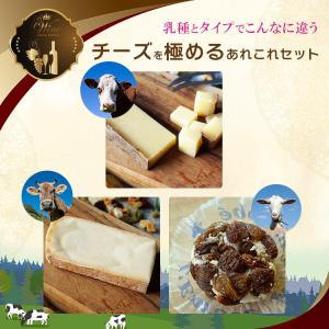 ヨーロッパのちょっと珍しい チーズ お試しセット クロタンレザン・アボンダンス・タレッジョ 毎週水・金曜日発送|otokonodaidokoro