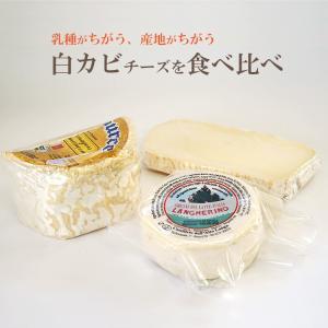 乳種や産地が異なる、白カビ チーズ 食べ比べ セット(カザティカ、ランゲリーノ、シャウルス ハーフ) 毎週水・金曜日発送|otokonodaidokoro