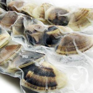 千葉県 九十九里産 地蛤 ジャンボはまぐり(ボイル済み  ハマグリ)1Kg(約12個)|otokonodaidokoro
