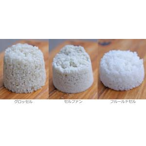 ポイント消化 ゲランドの塩 3種お試しセット【ネコポス便なら送料無料】(常温)