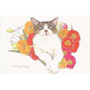 藤重日生 猫絵カード 「ポピーと猫」 ポストカードサイズ  fuji120011