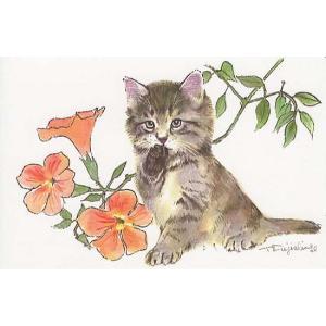 藤重日生 猫絵カード 「のうせんかずらと猫」 ポストカードサイズ  fuji120012