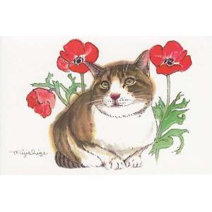 藤重日生 猫絵カード 「ポピーと猫2」 ポストカードサイズ  fuji120014