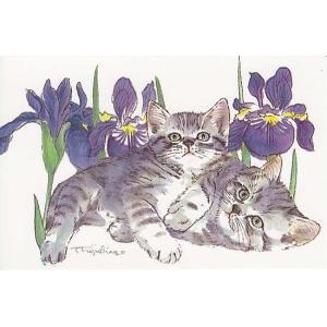 藤重日生 猫絵カード 「あやめと猫」 ポストカードサイズ  fuji120018