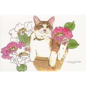 藤重日生 猫絵カード 「芍薬と猫」 ポストカードサイズ  fuji120020