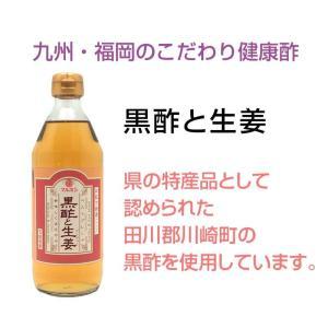 話題の最強!美味しい冬のホットドリンク 福岡県産 黒酢と生姜はちみつ入り 身体温めてリラックスタイム