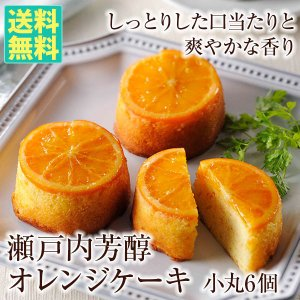 瀬戸内芳醇オレンジケーキ(小丸6個入) 送料無料 ギフト