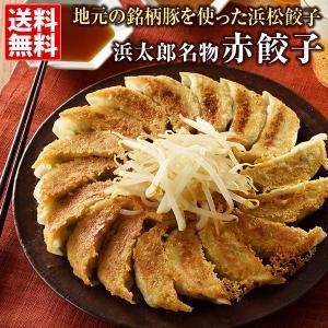 赤餃子 浜太郎 送料無料 マツコの知らない世界で紹介40個(20個×2箱)浜松 餃子