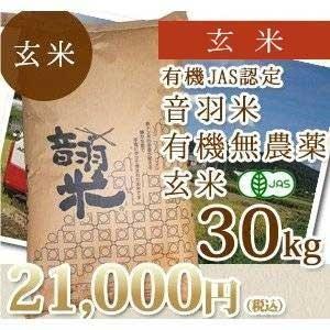 新米29年度愛知県産音羽米 無農薬玄米30kg(1袋)|otowamai