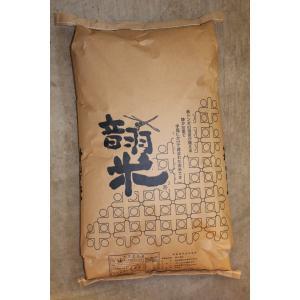 新米令和2年度愛知県産音羽米 無農薬玄米30kg(1袋)|otowamai|02