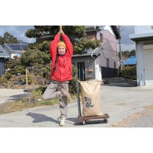 新米29年度愛知県産音羽米 無農薬玄米30kg(1袋)|otowamai|03