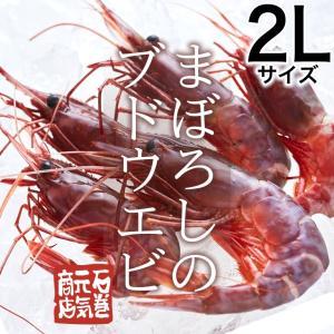 【条件付き送料無料】ブドウエビ 2Lサイズ(約400g/11...