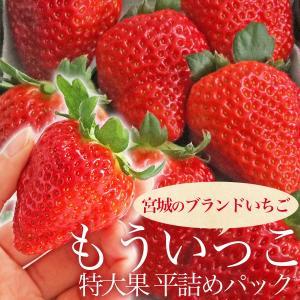 宮城ブランドいちご『もういっこ』特大サイズ(2パック)冷蔵|otr-ishinomaki
