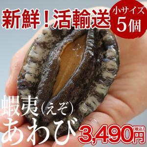 活エゾアワビ(60〜70g×5個)冷蔵 ◯|otr-ishinomaki