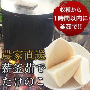 高橋さんの朝掘りたけのこ水煮(たけのこ約600g)常温|otr-ishinomaki