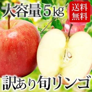 【条件付き送料無料】東北産 訳ありリンゴ(バラ詰め 約5kg/目安16〜28玉)常温|otr-ishinomaki