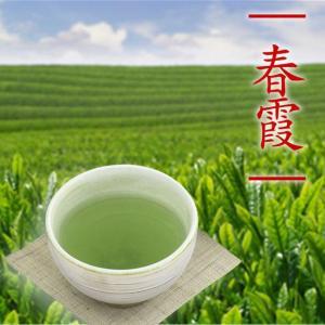 煎茶 春霞 100g 平袋入 中蒸し煎茶 一番茶 贈答 美味しい お茶 ポスト便|otyashizuoka
