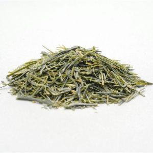 煎茶 きら香 5g袋入 新品種 白茶 袋井市 竹内農園 希少 品種 甘い otyashizuoka 02