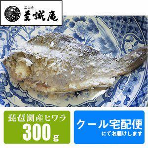 ふなずし 琵琶湖産ヒワラ(ギンブナ)鮒寿し 300g 姿 - 道の駅草津|oumitokuichi