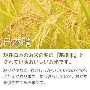 日本晴(田中廣之) 10kg 令和元年 滋賀県産 近江米 - 道の駅草津|oumitokuichi|02